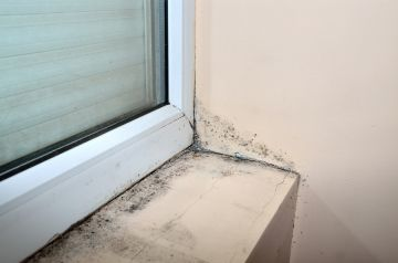Mold removal by Glover Environmental
