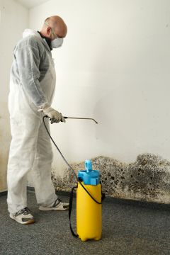 Buies Creek Mold Removal Prices by Glover Environmental