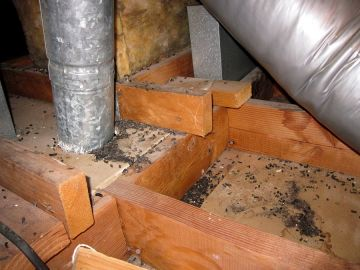 Crawl Space Restoration in Stem North Carolina