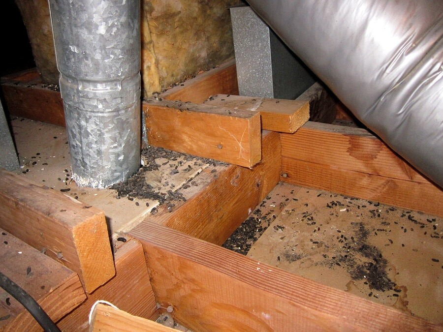 Crawl Space Restoration by Glover Environmental